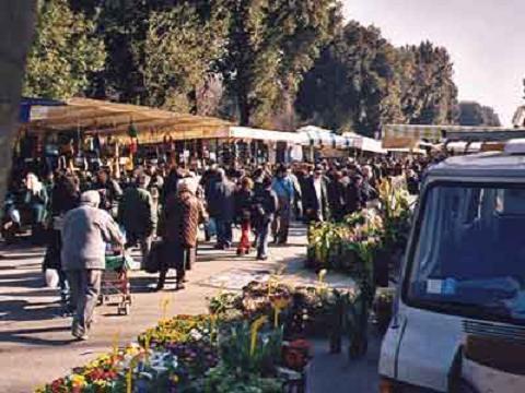 Mercato delle Cascine Firenze