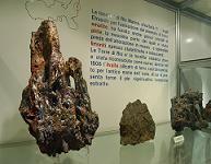 Museo di Storia Naturale Sez. di Mineralogia e Litologia