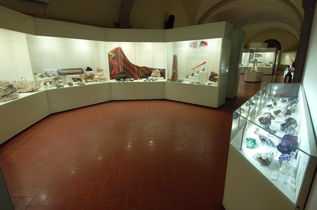 Museo di Storia Naturale dell'Università di Firenze